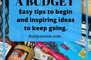 ADHD Diet on a budget