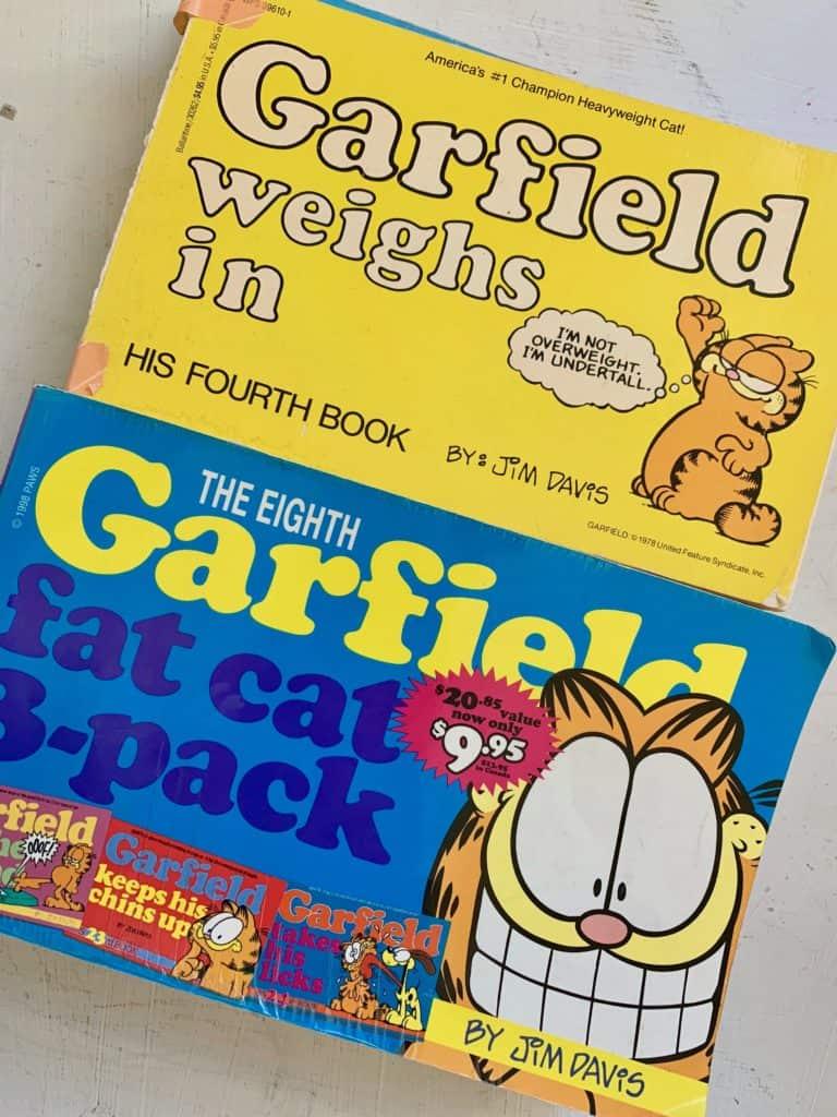 2 garfield comic books